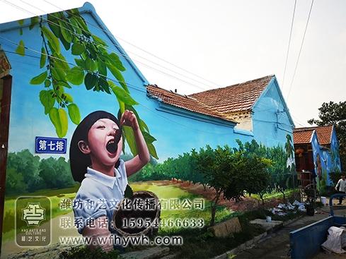 五井美丽乡村手绘壁画